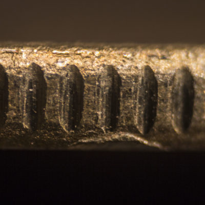 Edge of a 5 rupees coin